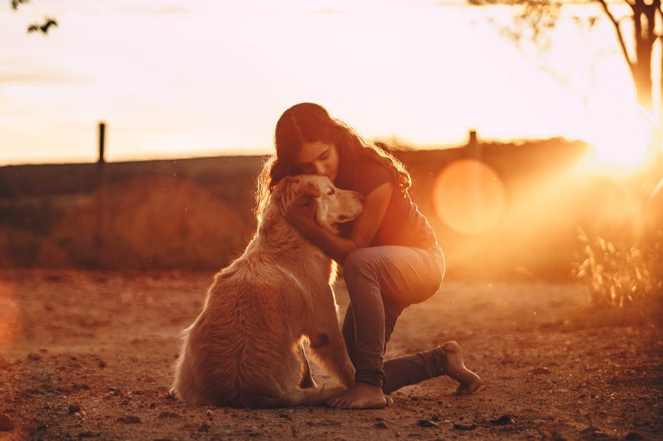 Emotional Support Dog Requirements