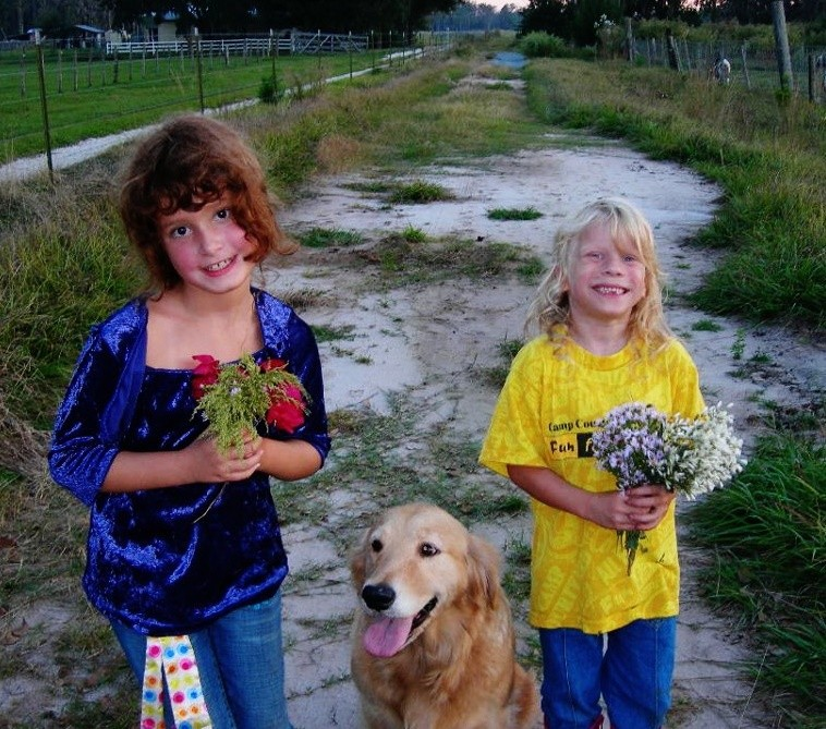 National Golden Retriever Day-In Memory of Angel